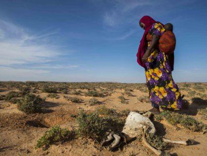 Droogte Somalie Unicef