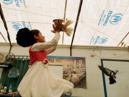 Zaatari Djinn - Humanity House