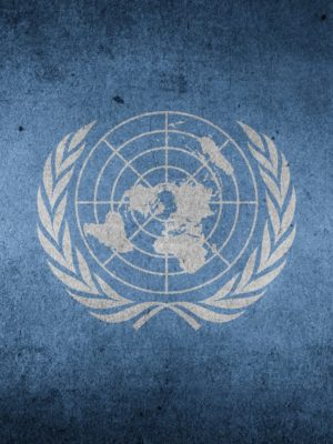 Logo Verenigde Naties - Humanity House